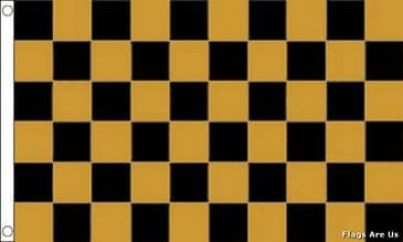 Black & Gold Check