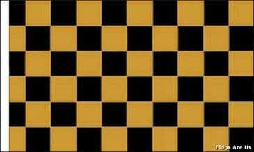Black & Gold Check  (Sleeved)