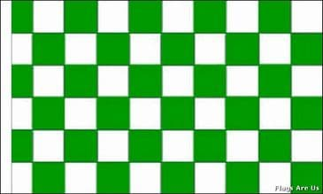 Green & White Check  (Sleeved)