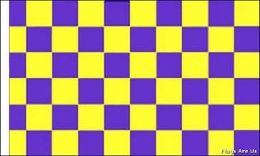 Purple & Yellow Check  (Sleeved)