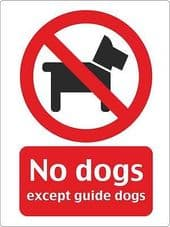 """""""No Dogs"""" WARNING STICKER DECAL SIGN A5 (145mm x 195mm) SHOP OFFICE"""