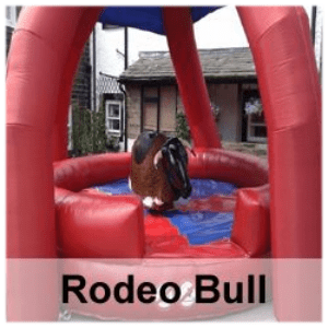 Rodeo Bull & Disco Theme Night Package