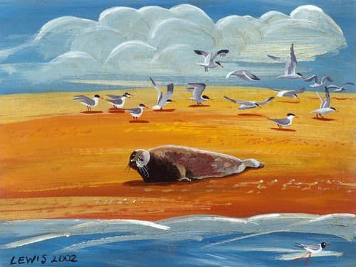 Seal Art Prints by Brian Lewis,First Rays Of The Sun