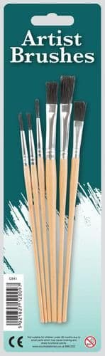 Set of Brushes for Students and Hobbyist