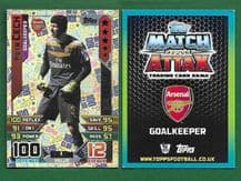Arsenal Petr Cech Czech Republic 461 100 Club