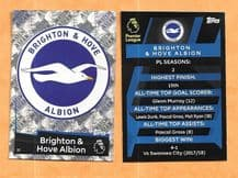 Brighton Hove Albion Badge (JK) 37