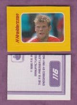 Charlton Athletic Hermann Hreidarsson 116A