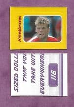 Charlton Athletic Hermann Hreidarsson 116B