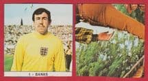 England Gordon Banks 1 (M)