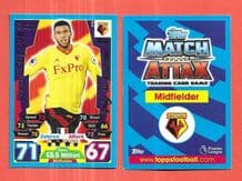 Watford Etienne Capoue All Rounder 316 (JK)