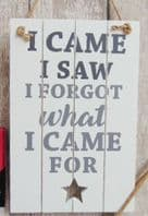 'I Came I Saw I Forgot What I Came For' Large Wooden Humourous Hanging Sign Plaque....