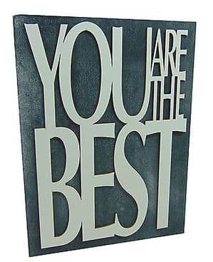 'YOU ARE THE BEST' CHUNKY SLATE COLOURED WOODEN FREE STANDING OR HANGING SIGN....WAS £4.95
