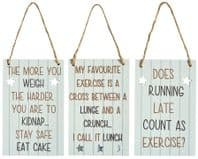 Choice Of 3 Humourous Wooden Hanging Sign Diet, Exercise etc.....