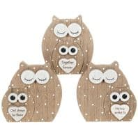 Dreamy Owl Within An Owl Wooden Cute Owl Sayings Free Standing Sign.....