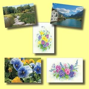 All 5 Packs of the Most Popular Notecards (EC355)