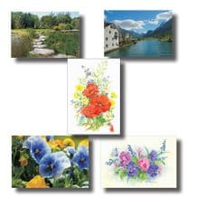 All 5 Packs of the Most Popular Notecards (EC372)