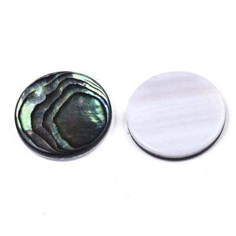 Shell Cabochons - Flat Round 20mm - 1 piece