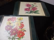 6 + 2 TABLE PLACE MATS GREEN BORDER FLORAL DESIGNS