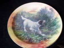 "COLLECTABLE 10.5"" DISPLAY PLATE ROYAL DOULTON RETRIEVER POINTER DOG D5770 1-39"