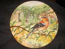 COLLECTABLE GILDED DISPLAY PLATE ROYAL DOULTON GARDEN VISITORS CHAFFINCH 1992 2