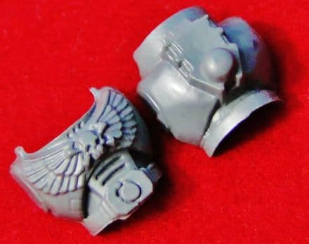 Space Marine Body Torso (Skull & Crossbones) front and back