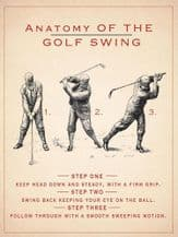 Anatomy of the Golf Swing Metal Wall Sign (4 sizes)