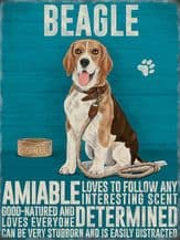 Beagle Metal Wall Sign (4 sizes)