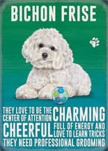 Bichon Frise Metal Wall Sign (4 sizes)