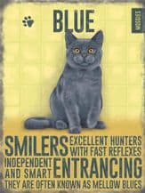 Blue Cat Metal Wall Sign (4 sizes)