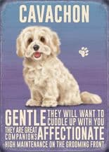 Cavachon Metal Wall Sign (4 sizes)