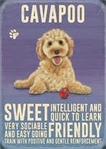 Cavapoo Metal Wall Sign (4 sizes)