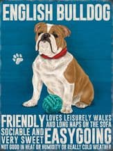 English Bulldog Metal Wall Sign (4 sizes)