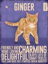 Ginger Cat Metal Wall Sign (4 sizes)