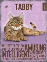 Tabby  Cat Metal Wall Sign (4 sizes)
