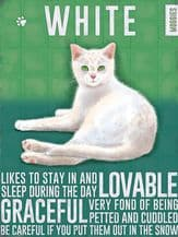 White Cat Metal Wall Sign (4 sizes)