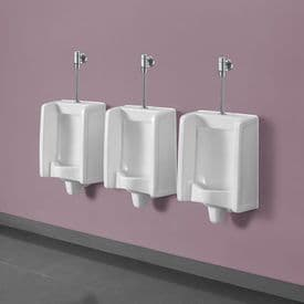 Healey & Lord Florida Urinal with Exposed Push Button Direct Flush Valve
